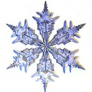 snowflake_300h3